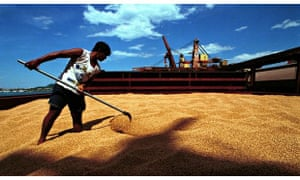 A worker moves soy beans