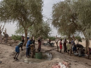 Timbuktu's open-air slaughterhouse.