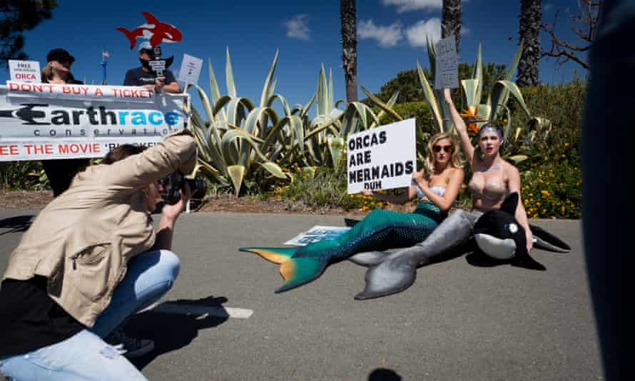 Demonstrators campaigning for an end to orca captivity protest outside SeaWorld, San Diego, in March