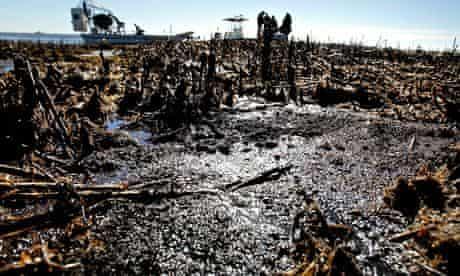 Months After BP Oil Spill