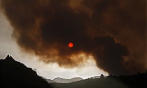wildfire forest fire in Tenerife