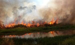 Wiseman Island wildfire