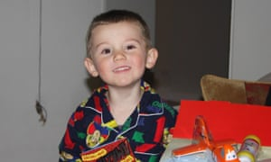 William Tyrell search: police say sniffer dogs have found no