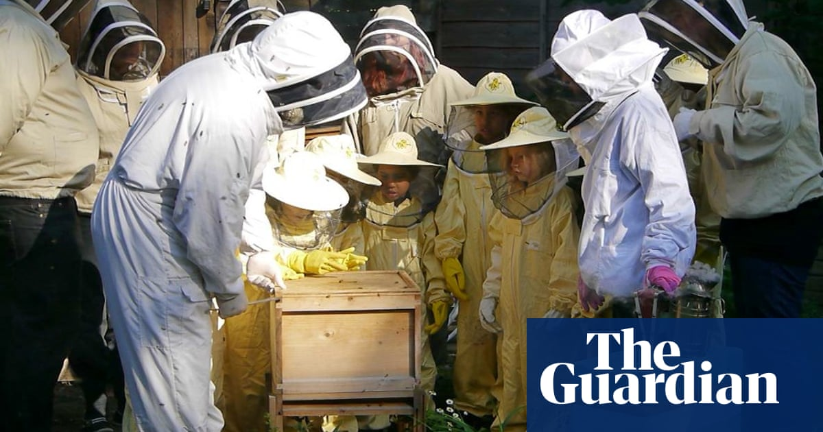 093d4d1f7 Why BeeUrban's hives are creating a buzz across the capital | Life ...