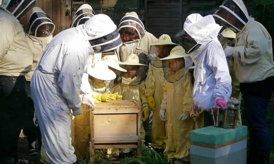 live better bees