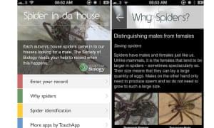 Spider in Da House app
