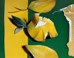 Lemons 2013.