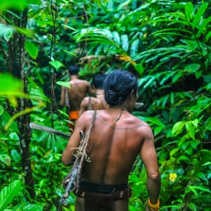In the forests of Siberut Island, Indonesia, the Mentawai hunt monkeys with bows and poison arrows