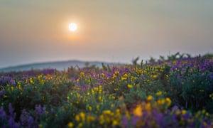 Sunset in Somerset, England