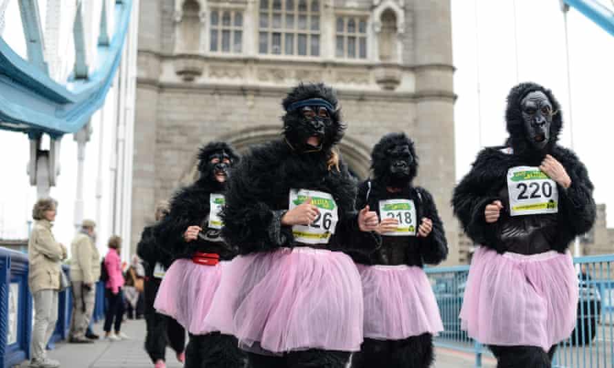 The 2013 Gorilla Run