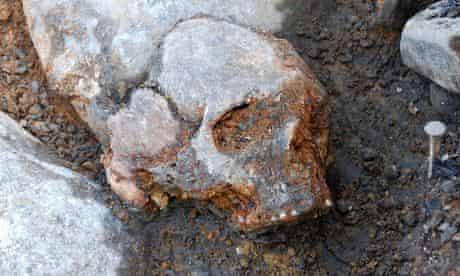 Kanaljorden cranium of woman