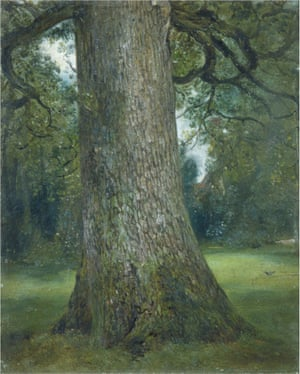 Study of the Trunk of an Elm Tree, John Constable, 1821.
