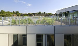 The roof gardens will include vineyards, beehives and ponds. Photograph: Hufton + Crow