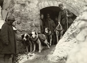 Italian soldiers with their rescue dogs.-