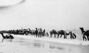 Indian troops with the British army wash camels in the sea off Rafa, Palestine.