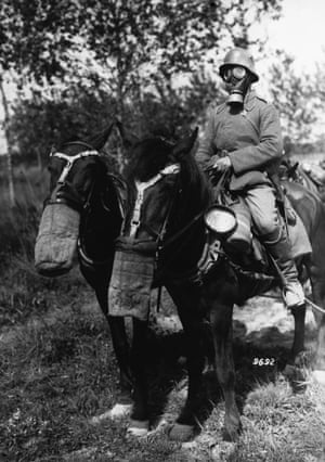German soldier and horses, both equipped with gas masks.