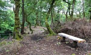 Kilfinan Community Forest, Argyll, Scotland