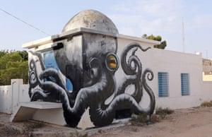 A mural by Belgian artist ROA is part of the street art project 'Djerbahood'