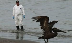 Halliburton BP oil spill