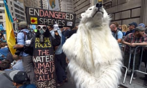 flood wall street polar bear protester
