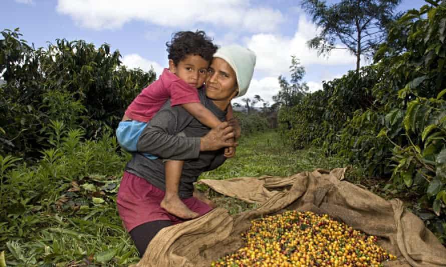 The Da Silva family, coffee plantation workers, Brazil