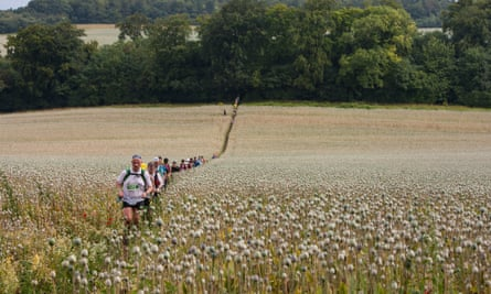 Runners' high: competitors jog through a field of poppies on the Ridgeway.