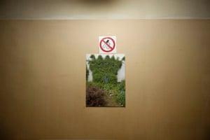 'No smoking' signs.