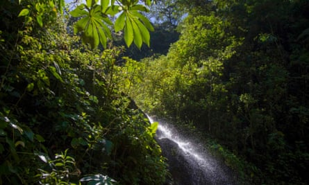 A small cascade is seen at the Manu Biosphere Reserve Cloud Forest in Peru's southern Amazon region