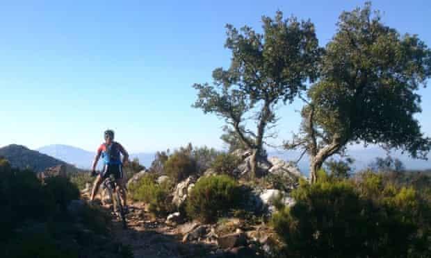 Mountain biking, Los Alcornocales natural park, Tarifa