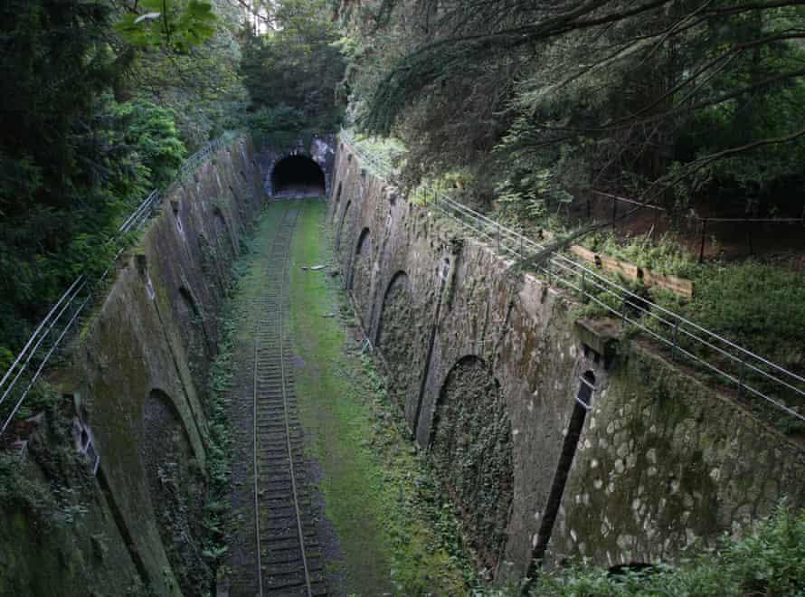 Plants have overtaken the former rail track.