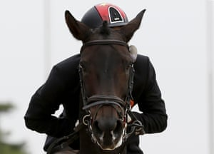 And in this final photograph, China's Liang Ruiji rides Vasthi during the eventing final at the Asian Games in Incheon, South Korea
