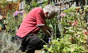 The Rootless Garden sets up temporary gardens to help people with dementia.