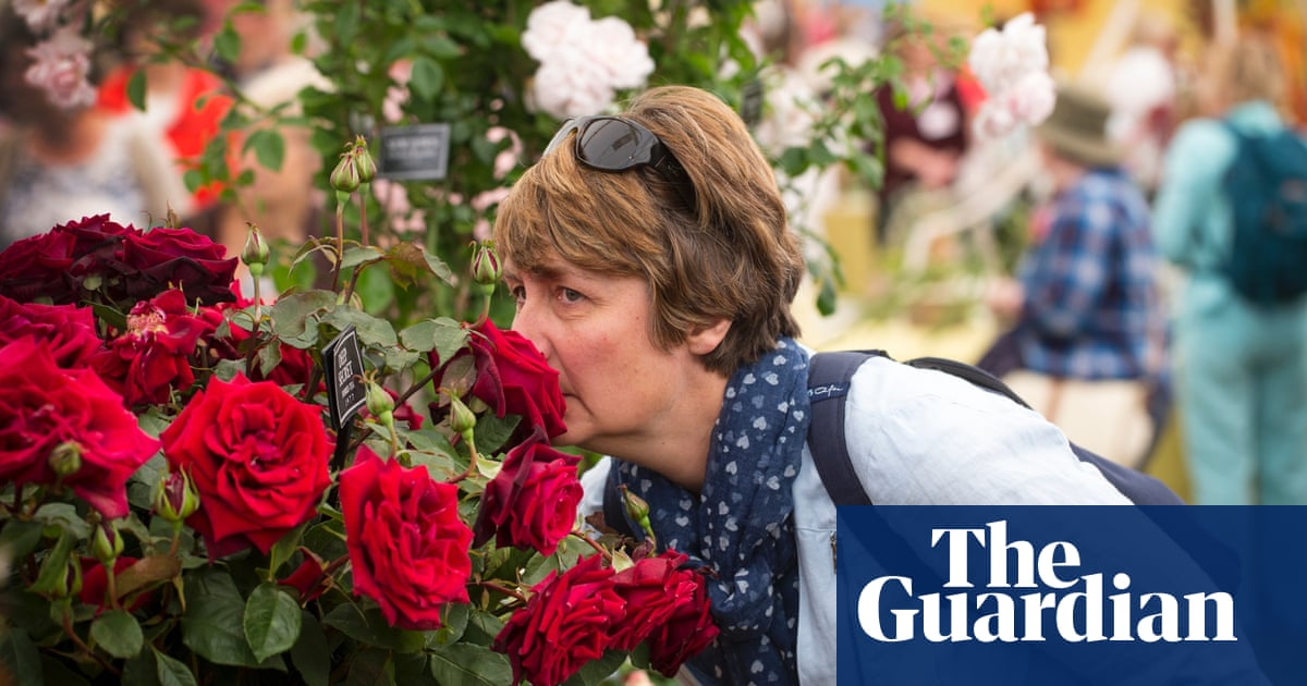 Your nose knows death is imminent | Mo Costandi | Science