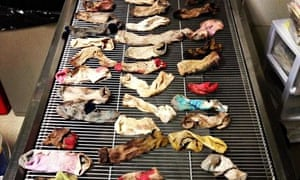 The socks that were removed from the dog's stomach.
