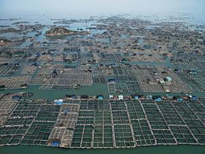 Marine Aquaculture #1Luoyuan Bay, Fujian Province, China, 2012.