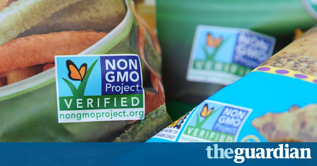 are genetically modified foods safe to eat essay