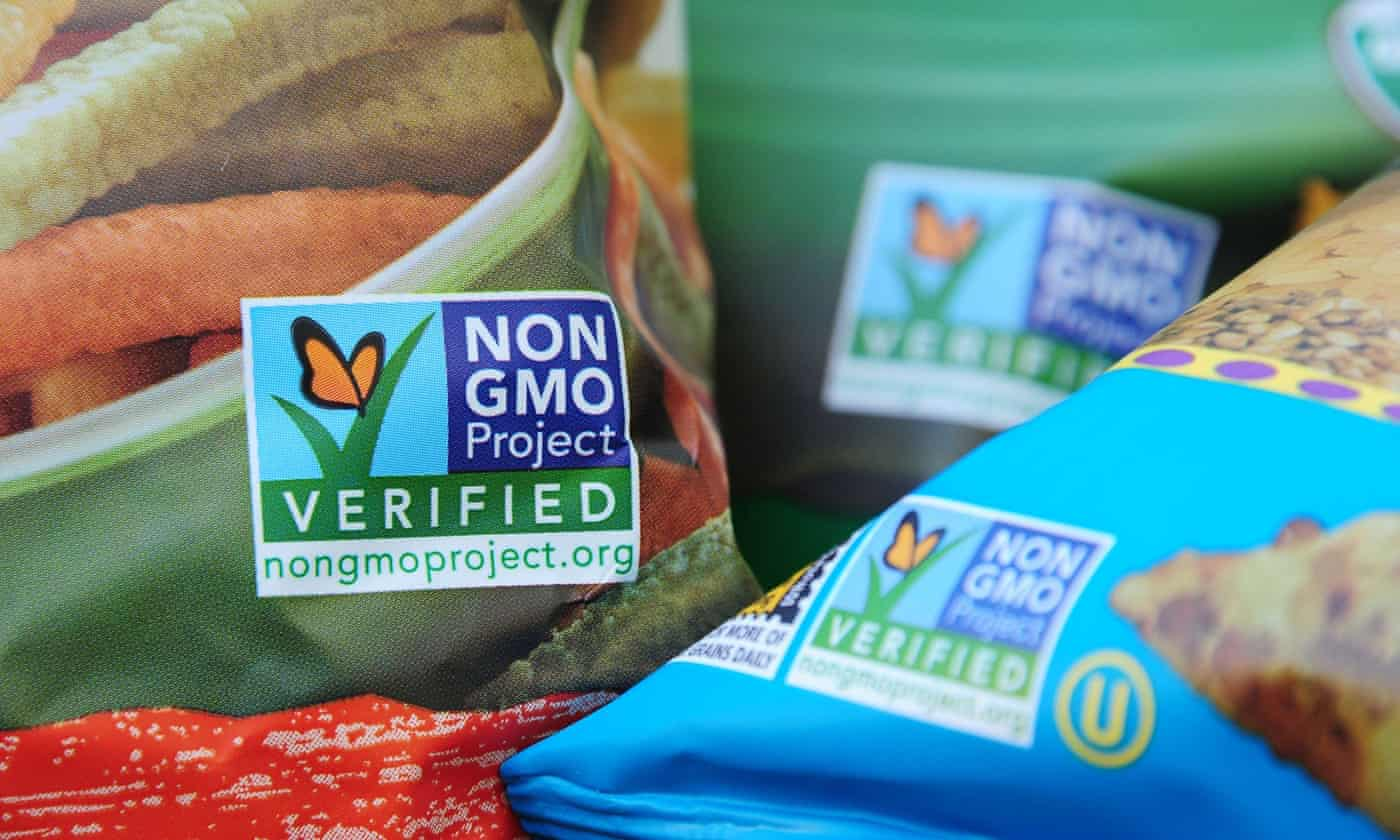 EU under pressure to allow GM food imports from US and Canada