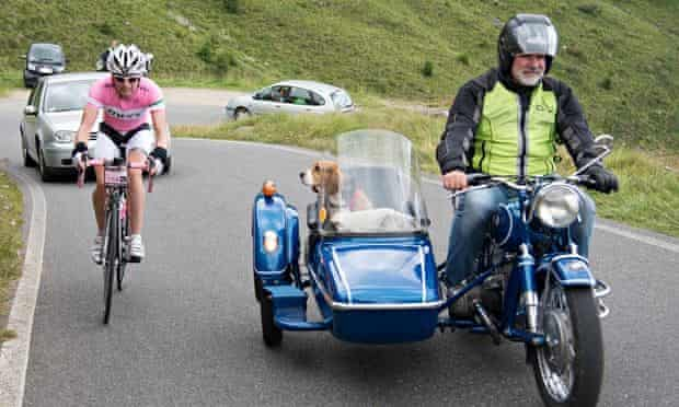 Haute Route Dolomites Day 3 - rider and dog passenger