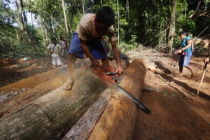 A Ka'apor Indian warrior uses a chainsaw to ruin one of the logs they found during a jungle expedition to search for and expel loggers from the Alto Turiacu Indian territory, near the Centro do Guilherme municipality in the northeast of Maranhao state in the Amazon basin, August 7, 2014.