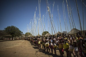 As part of the ceremony, the young women dance bare-breasted for the king, each carrying a long reed, deposited later as they approach the King.