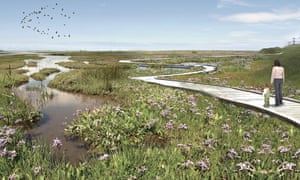 Artist's impression Steart Marshes
