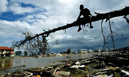 An Acehnese sits on a fallen tree in a devasted area in the tsunami-hit city of Banda Aceh