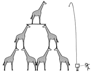 Three giraffes high ... Illustration from What If?
