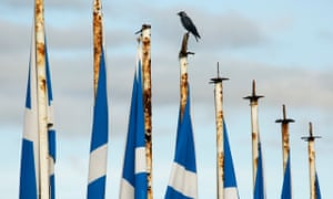 A crow sits on a sagging saltire
