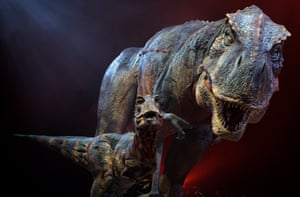 Some research proposals will have clear public appeal, such as a study to determine how much tranquilliser would have been needed to stop a T rex in its tracks.
