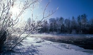 Snowscape.