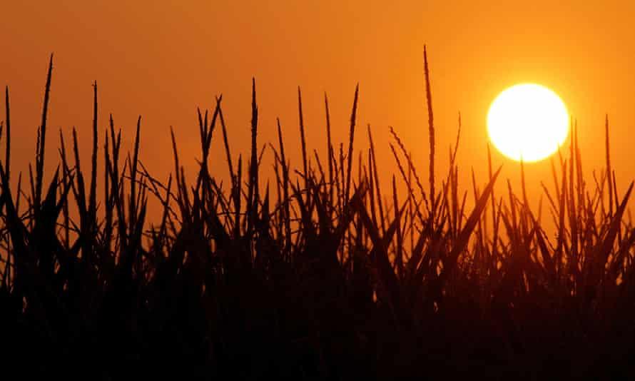 The sun rises in Pleasant Plains, Illinois.