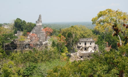 Temple 1 and the palace from Temple 5 at Tikal.
