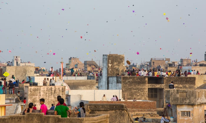 Uttarayan: concerns over bird fatalities during kite festival in India |  Birds | The Guardian
