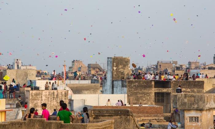 Uttarayan: concerns over bird fatalities during kite festival in India |  Birds | The Guardian